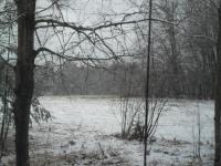 Winter Field #2