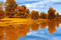 Autumn-Trees-by-a-Lake-Side
