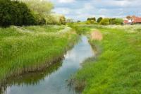 Stream-Through-Grass-in-the-Countryside
